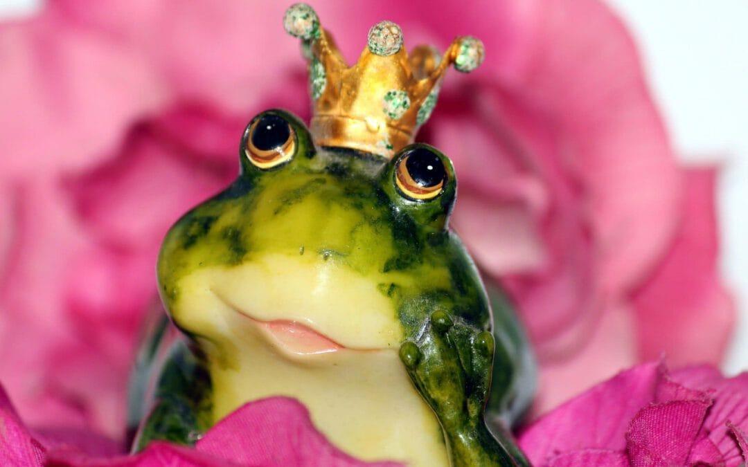 ¡Una rana que habla!